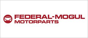 Auto Plus Federal Mogul logo